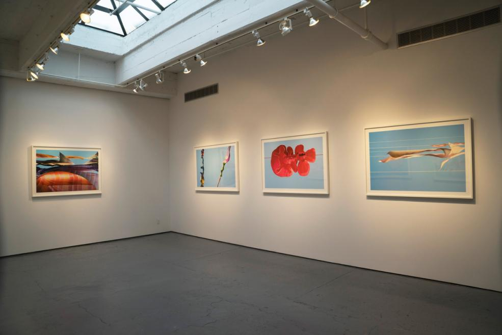 Installation view, Julie Saul Gallery