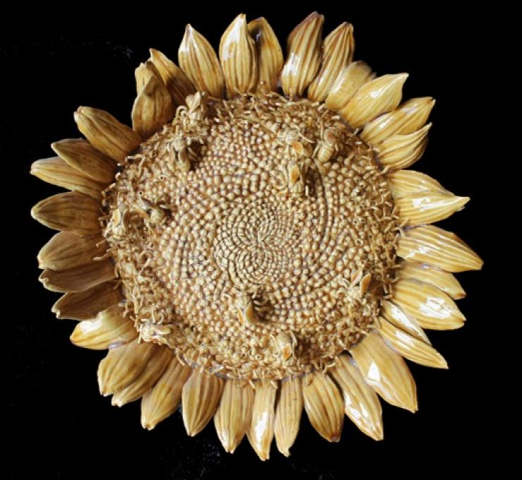 Sunflower, Multiple Bees, 2014